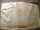 Cadastre de Griselles de 1832 - Plaine des Carcas