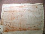 Cadastre de Griselles de 1832 - Orme Florin et Liard