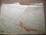 Cadastre de Griselles de 1832 - Plaine de Corbelin