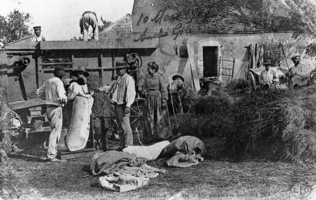 Battage du blé en 1907
